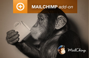 EE3 MailChimp Integration
