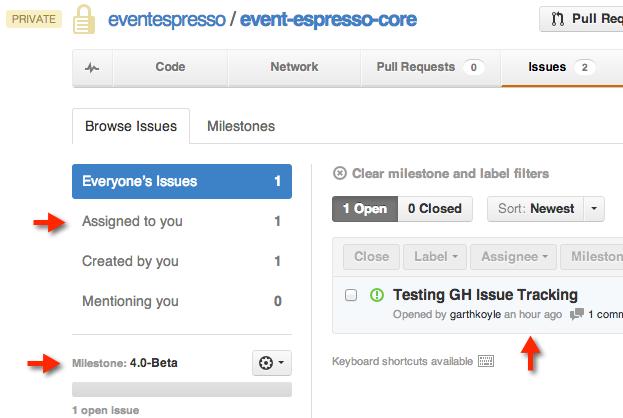 Select EE 4 Issues on GitHub