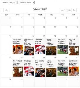 film festival calendar view
