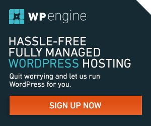 WP Engine - Premium WordPress Hosting
