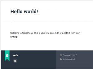 Default WordPress Post Output